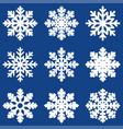 set white winter snowflak vector image vector image