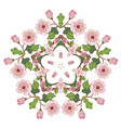 sakura blossom ornament vector image