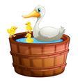 A bathtub with ducks vector image vector image