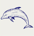 Beautiful dolphin jumping in the water vector image vector image