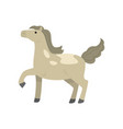 cute race sport horse walking with head up vector image vector image