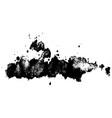 ink dry brush stroke vector image vector image