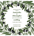 wedding invitation card with olive brunches vector image vector image