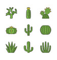 wild cactuses color icons set vector image