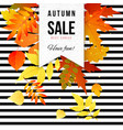 bright autumn sale striped poster vector image vector image