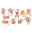 cute cartoon jungle baby monkey character poses vector image