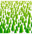 forest trees background vector image vector image