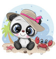 panda girl in a hat and cute crab on beach vector image vector image