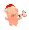 cute cartoon pig with megaphone on white vector image vector image