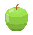 green apple icon isometric style vector image vector image