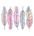 raibow feather mix vector image