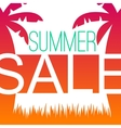 Summer sale design template with palms vector image vector image