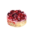 Watercolor cherry cake vector image