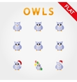 Cute collection of owls with different eye vector image