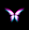 butterfly isolated logo bright colorfull vector image vector image