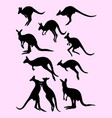 cute black silhouette of kangaroos vector image