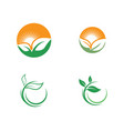 green leaf ecology nature icon vector image