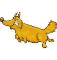 Happy shaggy running dog vector image