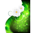 Leaves and flowers background vector image vector image