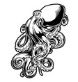octopus drawing black amp white 3 vector image vector image