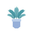 potted palm leaves plants flat icon vector image