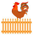 Rooster cock vector image