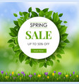sale spring flowers nature poster vector image