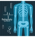 body radiography isolated icon design vector image