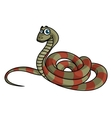 Cartoon striped snake vector image vector image