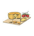 drawing of cheese head piece slices and cherry vector image vector image