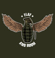 flay and boom vector image