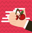 hand holding cherry fresh colored background vector image