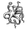 octopus drawing black amp white 7 vector image vector image