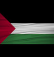 palestine flag flag of palestine blowig in the vector image