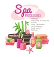 Spa Procedures vector image vector image