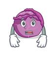 afraid red cabbage mascot cartoon vector image vector image