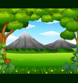 beatiful mountain in forest vector image vector image