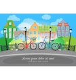 City Bridge Street with Bikes and Lights vector image vector image