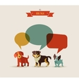 dogs speaking - icons vector image