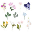 flat style beautiful flower in pink and purple vector image vector image