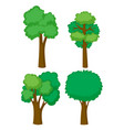 four shapes of trees vector image vector image
