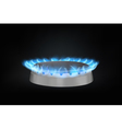 kitchen gas burner vector image vector image