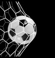 realistic soccer ball or football ball in net on vector image vector image
