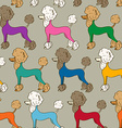 Seamless pattern of poodle dogs vector image vector image