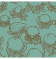 Various tropical citrus fruits vector image