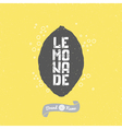 Hand drawn lemon silhouette with lemonade vector image vector image