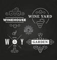 hipster wine logo or baners design on chalkboard vector image
