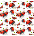 seamless pattern of ladybug vector image