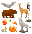 set of woodland forest animals and birds stylized vector image vector image