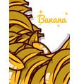 banana fruit juicy sweet poster vector image